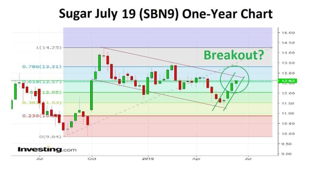 sugar one year