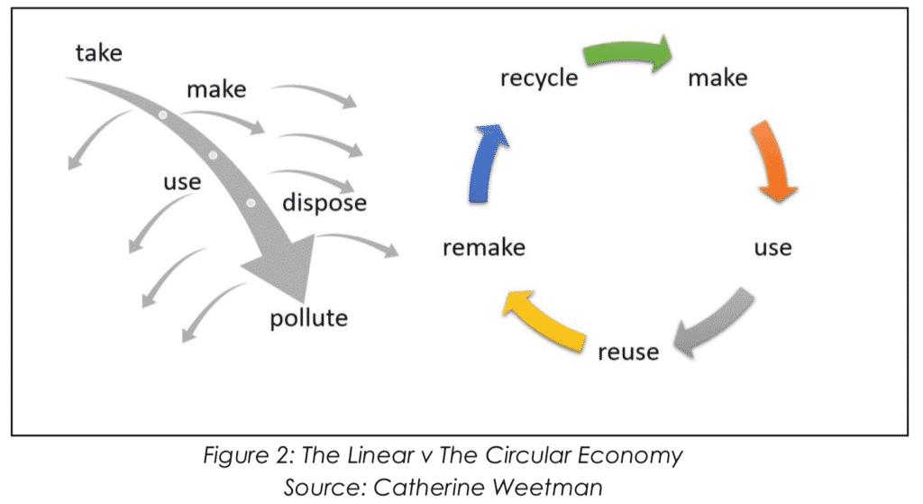 The Linear v The Circular Economy